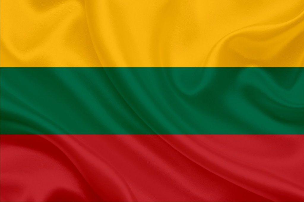 Зеленая карта в Литву
