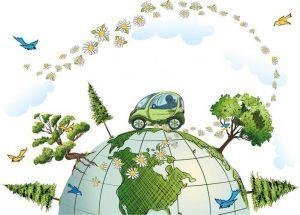 Оформить зеленую карту в компании ДокАвто